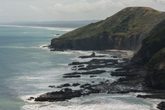 Nyazeeländsk kust Arkivfoton