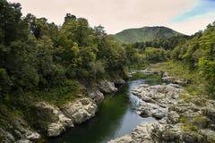 Nyazeeländsk Pelorus flod Arkivbilder