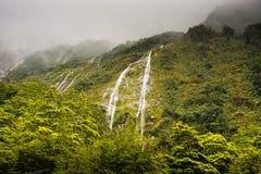 Nyazeeländska vattenfall nära Homer Tunnel Royaltyfria Foton