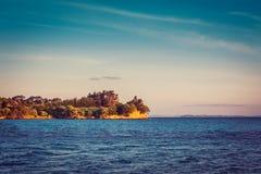 Nyazeeländskt iconic landskap - llushgräsplan av träden och klippan över det blåa havet arkivfoto