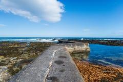 Nybster-Hafen in Schottland Stockfotografie