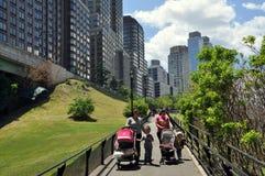 nyc南公园的河沿 免版税库存图片