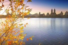 NYC的中央公园 免版税图库摄影