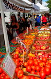 NYC: Рынок фермера на квадрате Линкольна Стоковые Фотографии RF