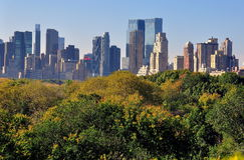 NYC :曼哈顿地平线看法从中央公园的 免版税库存照片