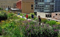 NYC :漫步在生产线上限公园的人们 免版税图库摄影