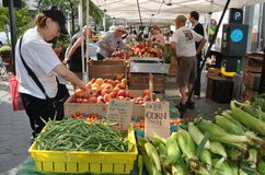 NYC : 林肯方形农夫的市场 库存照片