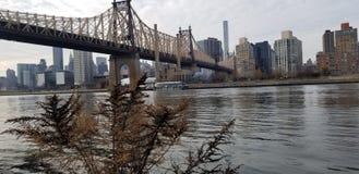 NYC 库存照片