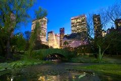 NYC中央公园在晚上 免版税库存照片