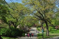 NYC :河沿公园在春天 库存照片