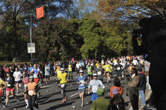 NYC 7 Νοεμβρίου: 2010 Σέντραλ Παρκ δρομέων μαραθωνίου Στοκ εικόνα με δικαίωμα ελεύθερης χρήσης