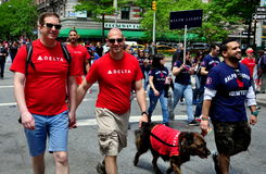 NYC: AIDS Walk 2014 Walkers. NYC: Workers from Delta Airlines and Ralph Lauren walking in the annual AIDS WALK NYC 2014 to raise money for AIDS charities royalty free stock images