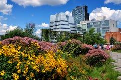 NYC: Alta linea parco e costruzioni moderne Fotografie Stock Libere da Diritti
