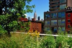 NYC: Alta linea parco & Empire State Building Immagine Stock Libera da Diritti
