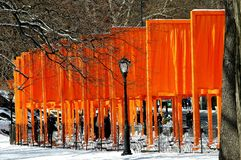 NYC: As portas por Christo no Central Park Imagem de Stock Royalty Free