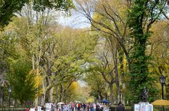 NYC in the Autumn Stock Images
