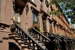 NYC: Brownstones in Harlem Royalty Free Stock Images