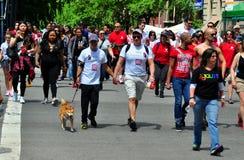 NYC: Camminatori della passeggiata 2014 dell'AIDS Fotografia Stock