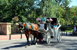 NYC: Central Park Hansom Cab. A horse carriage hansom cab with its driver wearing a top hat takes tourists for a ride in NYC's Central Park stock images