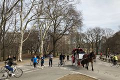New York City, New York - March 24, 2019: People enjoying a sunny and warm day by taking a horse carriage ride in Central Park. New York stock photo