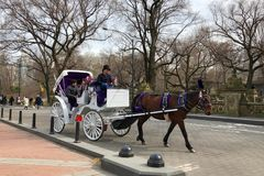 New York City, New York - March 24, 2019: People enjoying a sunny and warm day by taking a horse carriage ride in Central Park, Ne. W York, USA royalty free stock photo