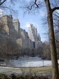 NYC Central Park im Winter Lizenzfreies Stockbild