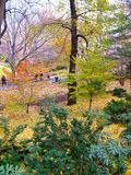NYC Central Park and its beautiful colors in Autumn and Winter Royalty Free Stock Photos
