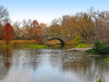 NYC Central Park and its beautiful colors in Autumn and Winter Stock Image