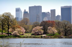 NYC: Central Park & Midtown Skyline royalty free stock photography