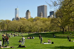 NYC: Central Park Sheep Meadow Stock Image