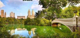 NYC-Central Parkpanorama royalty-vrije stock foto's