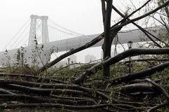 NYC Damage - Hurricane Sandy. Debris in East River Park Manhattan after Hurricane Sandy hits NYC looking up at Williamsburg Bridge in the background stock photos