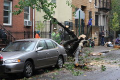 NYC Damage - Hurricane Sandy. Workers clearing fallen trees in east Manhattan after Hurricane Sandy hits NYC stock image