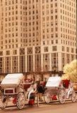 Nyc de Central Park Imagenes de archivo