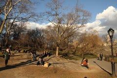 Nyc de Central Park Imagem de Stock
