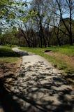 Nyc de Central Park do sinuoso de Caminho Imagem de Stock Royalty Free