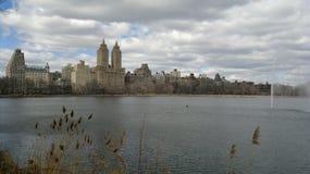 NYC de parc de quintal Photos stock