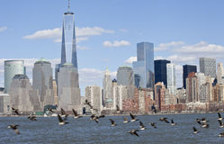 NYC Downtown Skyline royalty free stock image
