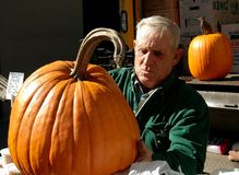 NYC: Farmer with Pumpkin Stock Images