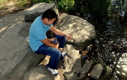 NYC: Father & Son Feeding Ducks Royalty Free Stock Photos