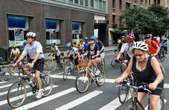 NYC: Fietsers op de Weg van het Park Stock Afbeeldingen