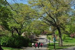 NYC: Flussufer-Park im Frühjahr Stockfoto
