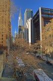 NYC-gator Royaltyfri Bild