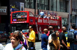 NYC: Gray Line Sightseeing Bus Stockfotos