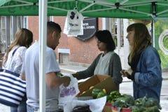 NYC Green Market Youth Market Royalty Free Stock Photography