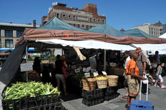 NYC: Harlem Farmer's Market. Shoppers at the Migliorelli Farms from upstate New York buying farm-fresh produce at the Adam Clayton Powell, Jr. plaza on West Stock Photography