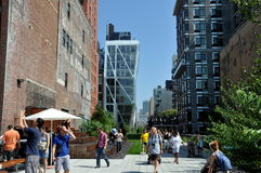 NYC:  The High Line Park Royalty Free Stock Photos