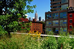 NYC: High Line Park & Empire State Building Royalty Free Stock Image