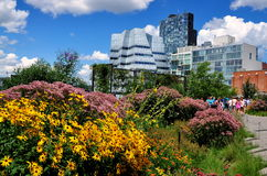 NYC: High Line Park and Modern Buildings Royalty Free Stock Photos