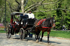 NYC: Horse Carriage in Central Park. Driver taking tourists for a ride in one of New York City's famed horse carriages through Central Park on a warm Spring stock images